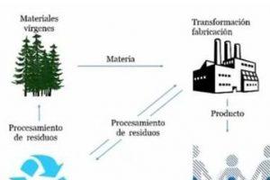 ecologia industrial definicion