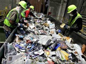reciclaje del papel residuos organicos