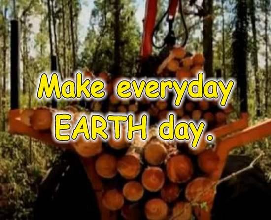 frases de reciclaje en ingles bosques