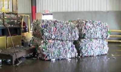 reciclaje de pet concepto