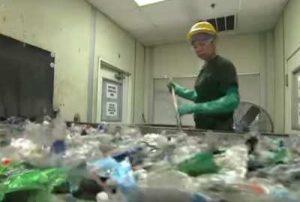 reciclaje de pet como negocio