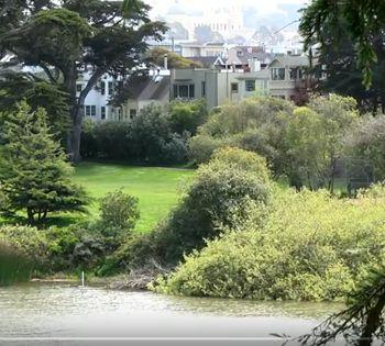 ecología urbana investigacion