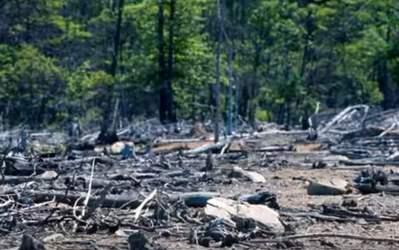 contaminación del suelo causas