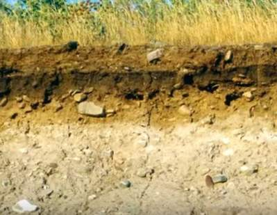 contaminación del suelo por basura