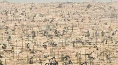 conclusion de la contaminación antropogénica