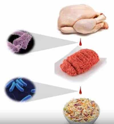 mecanismos de contaminación de los alimentos