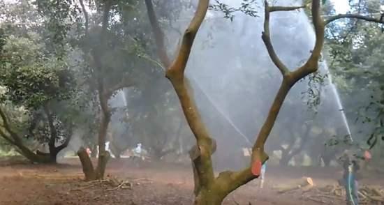 contaminación del suelo por fertilizantes pesticidas
