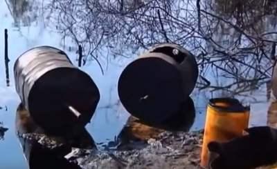 contaminación del suelo por hidrocarburos biorremediacion