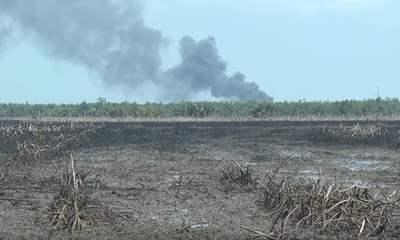 contaminación del suelo por hidrocarburos Pemex