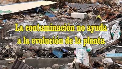 frases de contaminación ambiental biologica