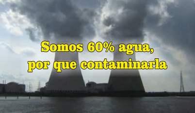 frases de contaminación ambiental radioactividad