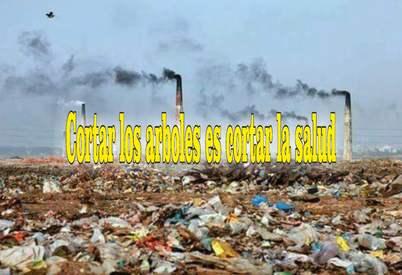 frases de contaminación ambiental suelo
