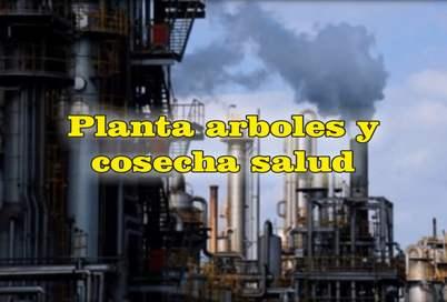 frases de contaminación ambiental quimica