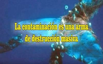 frases de contaminación ambiental peces