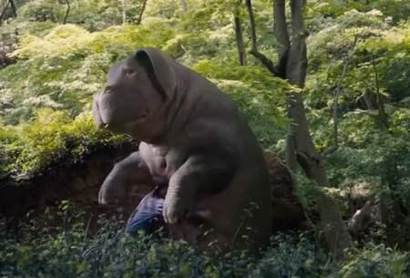 okja una película ecológica cuidado de los animales