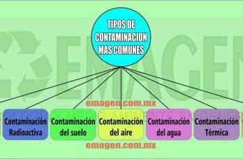 tipos de contaminación mas importantes