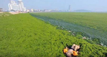 contaminacion industrial del agua en México