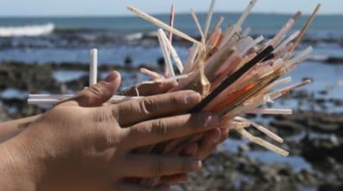 Campaña antipopotes playa