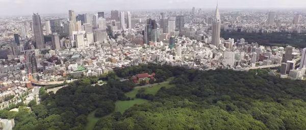 ciudades mas pobladas del mundo 2016
