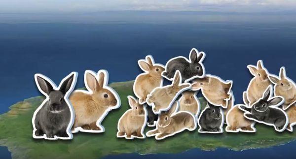 ecología de las poblaciones naturales