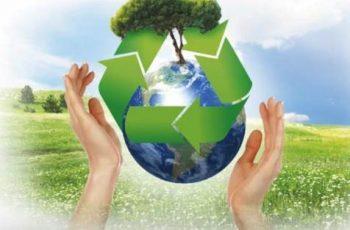 Sostenibilidad en las Empresas ecologia