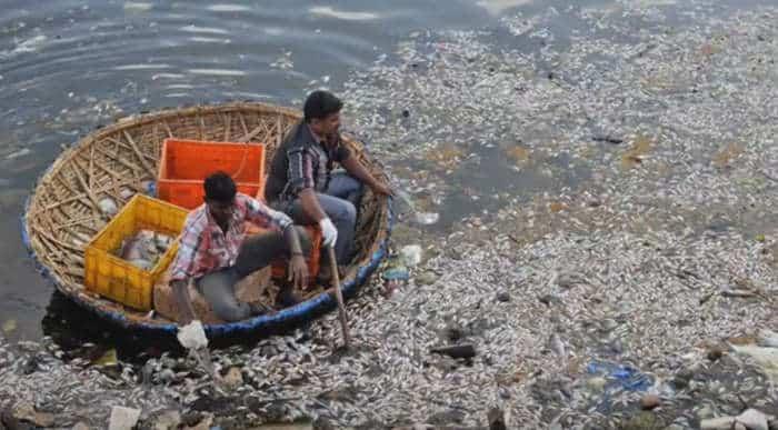 tipos de contaminación del agua en Argentina