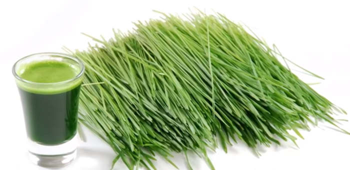 remedios caseros para la muela pasto de trigo