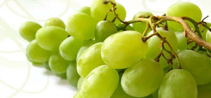 remedios para la tos uva